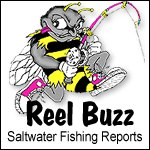 ReelBuzz Saltwater Fishig Reports