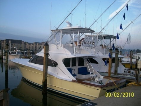 Virginia beach fishing charter top notch fishing report for Charter fishing virginia beach